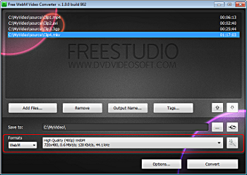 Free WebM Video Converter: select presets